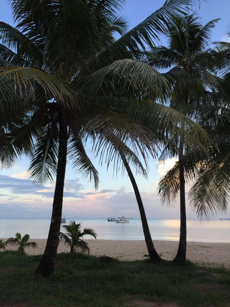 Palmen, Meer Strand Chumphon, Thailand