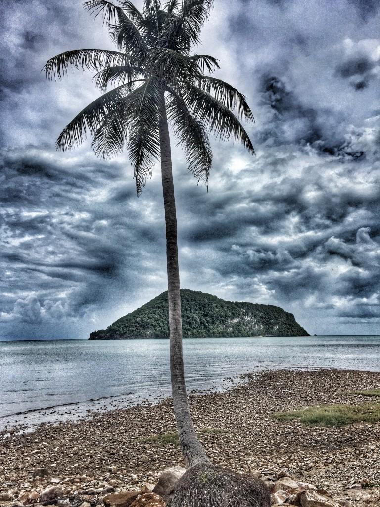 Einsame Palme, Meer und Insel Urlaub und Auswandern Chumphon Thailand