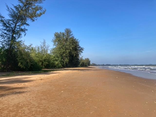 Muschelstrand Chumphon Thailand