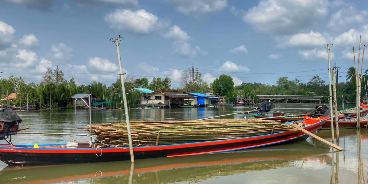 Bambus für Muschelzucht in Chumphon Thailand
