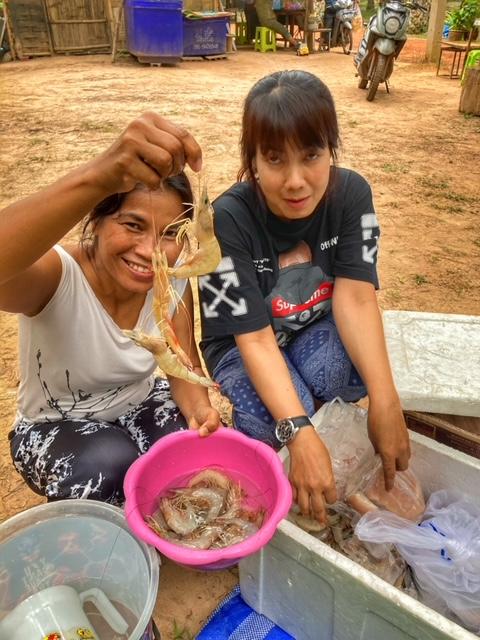 Camping Garnelen, Fisch und Tintenfisch
