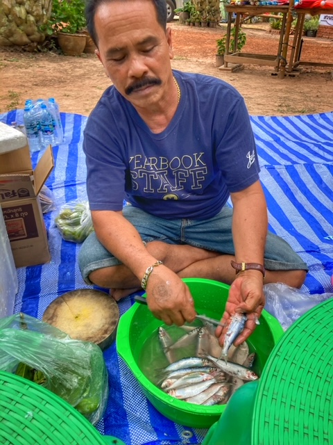 Camping in Chumphon Thailand 2