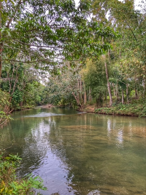 Camping in Chumphon Thailand