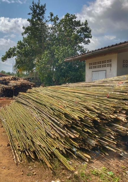 Bambus und Muscheln Thailand