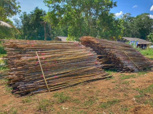 Bambus und Muscheln in Chumphon