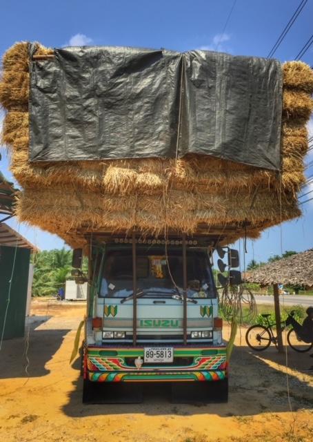 Straßenverkehr Thailand Strohtransport