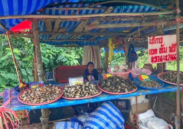 Muschelverkauf an der Autobahn Chumphon Thailand