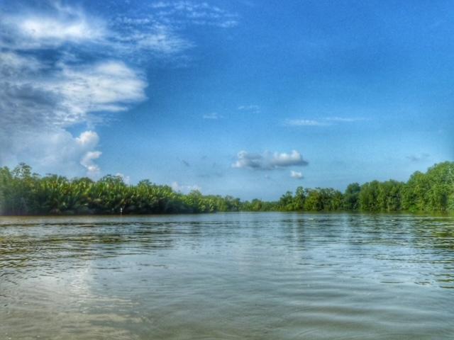 Mangroven Kanal Chumphon Thailand