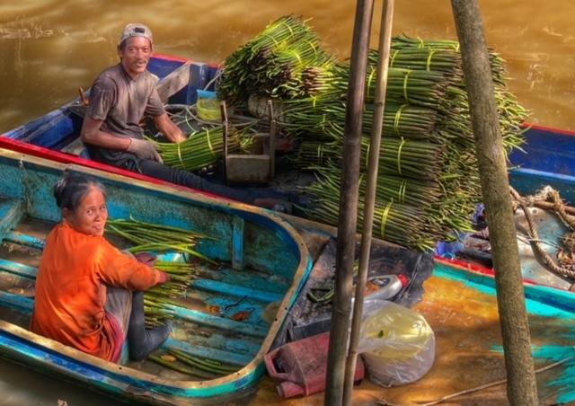 Mangroven Mangrovenwald Lunge der Erde Setzlinge Klimaschutz Klimawandel Chumphon Thailand