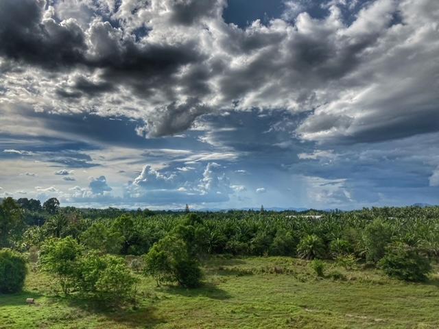 Wolken Plantagen Chumphon Thailand