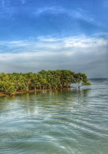 per Kajak aufs Meer Chumphon Mangroven Wald Thailand
