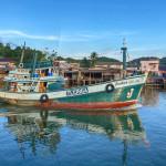 Tintenfisch anglen in Chumphon Thailand