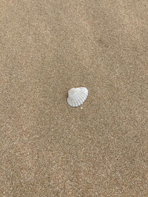 Quietschsand am Saairee Strand