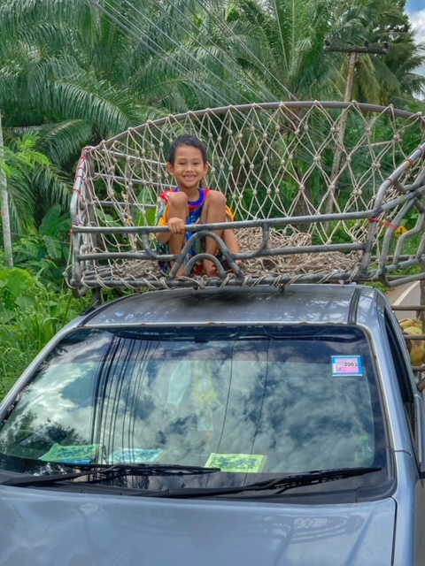 Junge auf Pickup, Kokosnusspflücker Chumphon Thailand