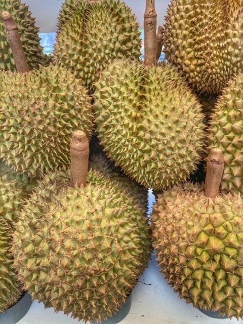 Durian Frucht Chumphon Thailand 1