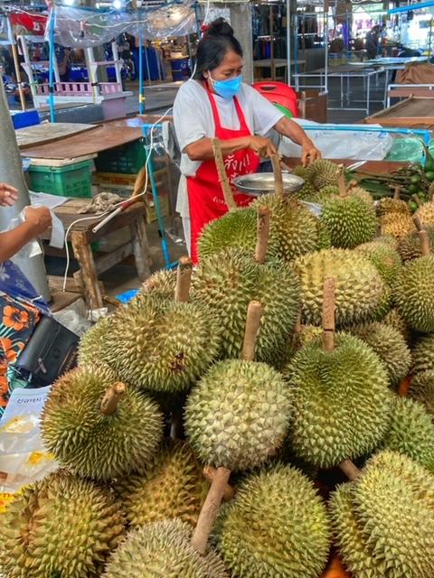 Durian Frucht Durianernte Chumphon Thailand 7