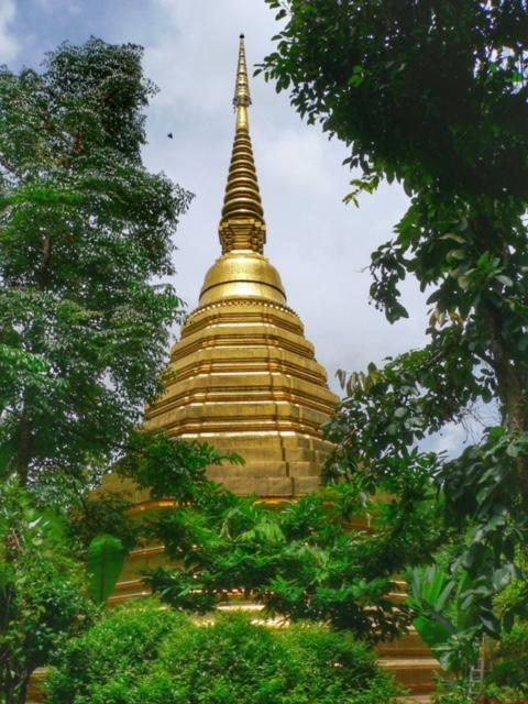 Erfahrungen Blog Thailand Urlaub Chedi